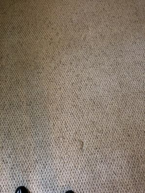 Before & After Carpet Stain Removal in Atlanta, GA (3)