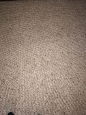 Before & After Carpet Stain Removal in Atlanta, GA (4)