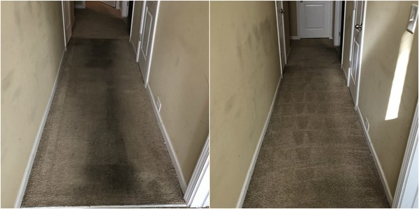 Before & After Carpet Cleaning in Hampton, GA (1)