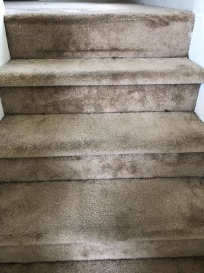 Before & after Carpet Cleaning in Atlanta, GA (3)